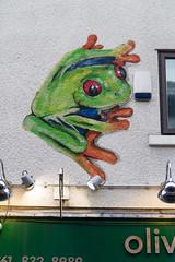 "another frog in the wall  #manchester #parade #uk #inghilterra #clod  #avventura #CombustaRevixi #corinaldo #sbandieratori #musici #amici #giugno2016 #streetphotography #frog #streetart #canon #7d (claudio ""clod"" giuliani) Tags: uk manchester streetphotography amici clod inghilterra corinaldo sbandieratori avventura musici combustarevixi paradeclodreflexcanon7duscitagruppostoricocombustarevixiavvenclodreflexcanon7duscitagruppostoricocombustarevixiavventuramilanoginevramanchesterukinghilterragiugno2016 giugno2016"