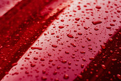 Water Drops On Car Paint II (SplitShire) Tags: auto red abstract color reflection texture nature wet water car rain weather metal closeup reflex cool rust shiny waterdrop paint image crystal metallic background smooth surface drop clean drip fluid rainy droplet vehicle backdrop transparent curve shape pour effect liquid sparse textured splashing