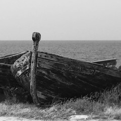 In secca (iremagi) Tags: bw barca sicilia bonagia