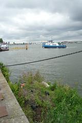 IJveer Azartplein - Zamenhofstraat (Railfan5569) Tags: amsterdam flora meerkoet gvb ijveer