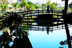 BMaia035a (Joo Batista**) Tags: bridge water gua ponte reflexo