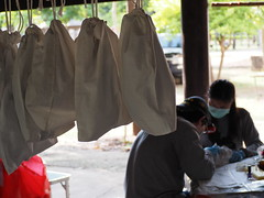 Biological samples collection from wildlife and livestock in Chonburi, Thailand (USAID Asia) Tags: usaid asia chonburi thailand bat bloodsamples wildlife livestock health disease
