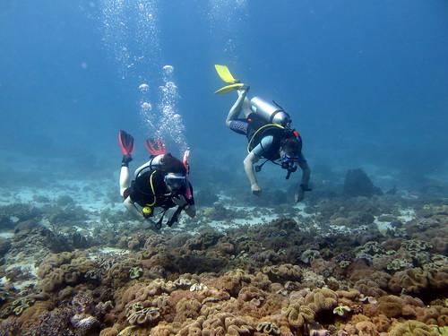 Dive kit in use