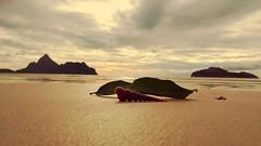2016-07-01_08-41-17 (BertMacFly) Tags: beach sunrise thailand thai shell panorama landscape sea sand clouds sky cameraphone lgg4 leaves seascape vacation sun