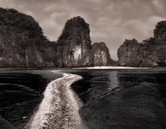 Sand Street (Marshall Ward) Tags: seascape landscape mono blackwhite sand vietnam halong halongbay 2016 nikond800 afszoomnikkor2470mmf28ged marshallward