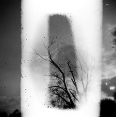 Spongy Creeper Eater (Creepella Gruesome) Tags: sky blackandwhite abstract tree 120 6x6 film nature silhouette clouds analog mediumformat branches surreal mysterious ilforddelta400 redfilter phantasm holga120n scannedfromnegative spongeeater