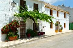 Caparacena, (Granada). (M Roa) Tags: olétusfotos greatphotographers platinumpeaceaward vividstriking
