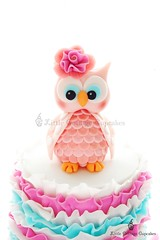 Emily's Sweet Owl! (Little Cottage Cupcakes) Tags: pink flowers cakes girl ruffles aqua purple owl birthdays fushia fondant sugarpaste owlcake littlecottagecupcakes