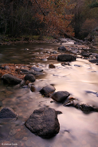 Photo - Autumn, Lefthand Creek, Buckingham Park