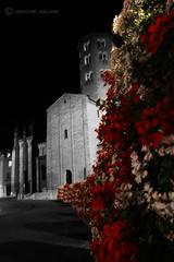 PIACENZA - gerani in Piazza Sant'Antonino (massimo mazzoni 78) Tags: night square shot basilica piazza fiori piacenza notte scatto gerani piazzasantantonino