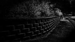 A path to the future... [Explore] (louieliuva) Tags:
