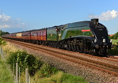 State Of The Union (2) (Feversham Media) Tags: york yorkshire streaks northyorkshire valeofyork steamlocomotives 60009 unionofsouthafrica a4s newearswick therailwaytouringcompany steamspecials thescarboroughflyer gresleya4pacifics