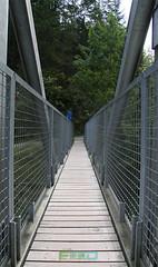 Blausee-5 (Fahad_Aljohani) Tags: bridge blue lake water river switzerland europe swiss بحيرة bluesea blausee ماء أزرق جسر نهر سويسرا زرقاء أوربا البحيرةالزرقاء