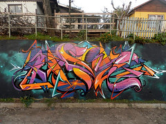Asie (Asie) Tags: wild color colors graffiti colores gigi ren sur asie graff wildstyle mulchén fros boster 2013 antisa