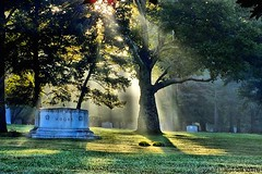 Play Misty for Me (TooLoose-LeTrek) Tags: morning autumn mist nature cemetery grave fog haze headstone beam gravestone treelight hs30