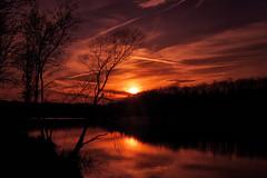 Forest lake. Sunset (Gena Golovskoy) Tags: