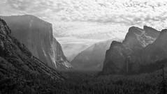 Yosemite National Parc (Clara Rubin) Tags: california blackandwhite landscape unitedstates national yosemite parc