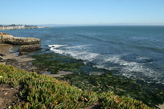 beautiful day in santa cruz (bigsassysmurf) Tags: california santacruz pacificocean