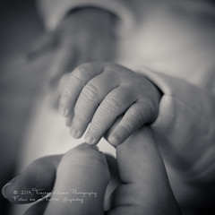 A Gentle Touch B&W (TraceyWilliamsPhotography) Tags: family baby love composition canon blackwhite hands fingers nephew newborn portraitphotography motherslove