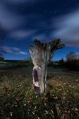 Cuentos nocturnos (raul_lg) Tags: longexposure sky espaa tree night clouds canon stars arbol noche spain cielo nubes estrellas nocturna soria contaminacion linterna mark3 largaexposicion castillayleon raullopez canon1635 solarforce canon5dmarkiii raullg