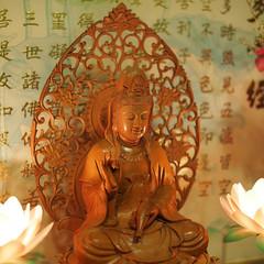 P1310196 (Feeder Wang) Tags: new year chinese taiwan olympus micro taipei nokton voigtlnder 43 omd 25mm springfestival f095 em5  2014