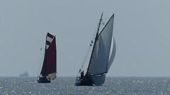 V01 - Humber sailing Race