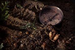 Boussole - 5 (Spock2029) Tags: leave foot sand trace sable compass empreinte feuille boussole