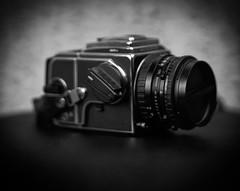 Hasselblad 503CW (Bystander_View) Tags: polaroid 45 51 hc 240 heliar wista