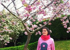 Bajo el rbol..., un ao mas.... (dediosromero) Tags: flores primavera retrato rbol dediosromero
