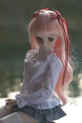 LG12 (jacksonlife) Tags: momo dollfiedream 嶺南之風