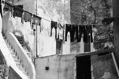 panni stesi.jpg (gilberto.gini) Tags: street blackandwhite bw strada bn biancoenero pannistesi leicasummicron40mm gilbertogini fujixpro1