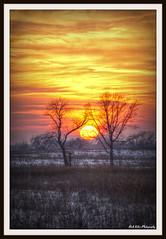 High Five (richard.kolar) Tags: trees winter sunset chicago path prairie naperville springbrook