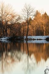 IMG_8179.jpg (R. Wenus) Tags: bayern deutschland wasser natur langzeitbelichtung stausee blauestunde ndfilter spiegelungen badtlz canoneos7d