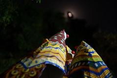 DSC04270_resize (selim.ahmed) Tags: nightphotography festival dhaka voightlander bangladesh nokton boishakh charukola nex6