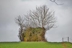 Uphill Pillbox (stavioni) Tags: church canal wwii ww2 defence basingstoke pillbox crookham