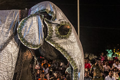 "Elephant - Nawam Perahera <a style=""margin-left:10px; font-size:0.8em;"" href=""http://www.flickr.com/photos/40608624@N00/16250191289/"" target=""_blank"">@flickr</a>"