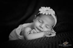 Grace 1 (Bobby Krstanoski - Photography) Tags: people baby canon blackwhite newborn sleepingbaby newbornbaby canonef2470f28 canon5dmarkiii