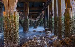 Under The Pier (kjeldvdh) Tags: wood sunset sea dark pier nikon rocks europe long exposure structure hidden seashell mussel depth d5500