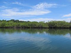 "Bocas del Toro <a style=""margin-left:10px; font-size:0.8em;"" href=""http://www.flickr.com/photos/127723101@N04/26726289104/"" target=""_blank"">@flickr</a>"