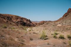 5R6K2955 (ATeshima) Tags: arizona nature havasu