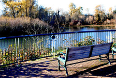 Riverfront City Park, Salem, OR (Emepol Photo) Tags: water ro river bench riverside outdoor banco