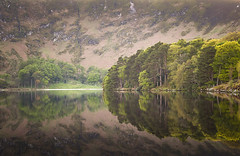 Still Waters (Rus) Tags: trees lake hill wicklow manfrotto cablerelease loughbray eaglescrag nikond5000