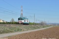 Diesel isolato (Francesco Fagnoni2) Tags: piacenza lis treviso trenitalia veneto dtr lonigo d445 trainspottig
