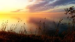 Cliff view (ossington) Tags: park lake toronto ontario canada color nature sunrise spring perfect shine shoreline content edge lakeshore vista scarborough serene effervescent bliss westhill lakefront mellow shimmer birdsanctuary glisten happier blissful eastpointpark