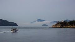 Seto Inland Sea (ysmalan) Tags: sea lighthouse bunny japan island boat inland seto okunoshima