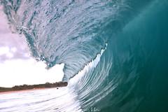 1C3A2434 (garrettmoss84) Tags: ocean beach lines canon photography hawaii photo break wave maui snap shore swell linear cryp