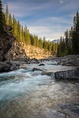 Bring on Summer (justin.montgomery81) Tags: blue trees canada mountains river rockies nikon sheep canadian alberta lee nd filters grad 2470mm kananaski d810