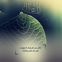 47 (ar.islamkingdom) Tags: