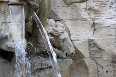 IMG_1231 (Vito Amorelli) Tags: italy rome fontana dei quattro 2016 fiumi