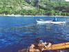 whale shark viewing & tumalog falls (2 of 26) (Rodel Flordeliz) Tags: sea water swimming snorkeling freediving cebu whaleshark gentlegiants opensea butanding oslob southofcebu whalesharkviewing